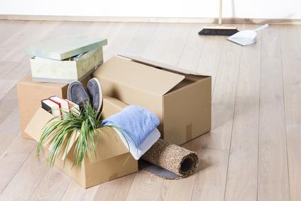 berliner umzugsunternehmen test von beratung service und preisen dtgv. Black Bedroom Furniture Sets. Home Design Ideas